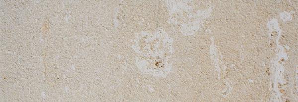 pierre-de-caberan-coquillee